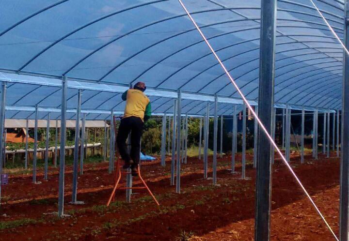 Instalação e Manutenção de Estufas Agricolas